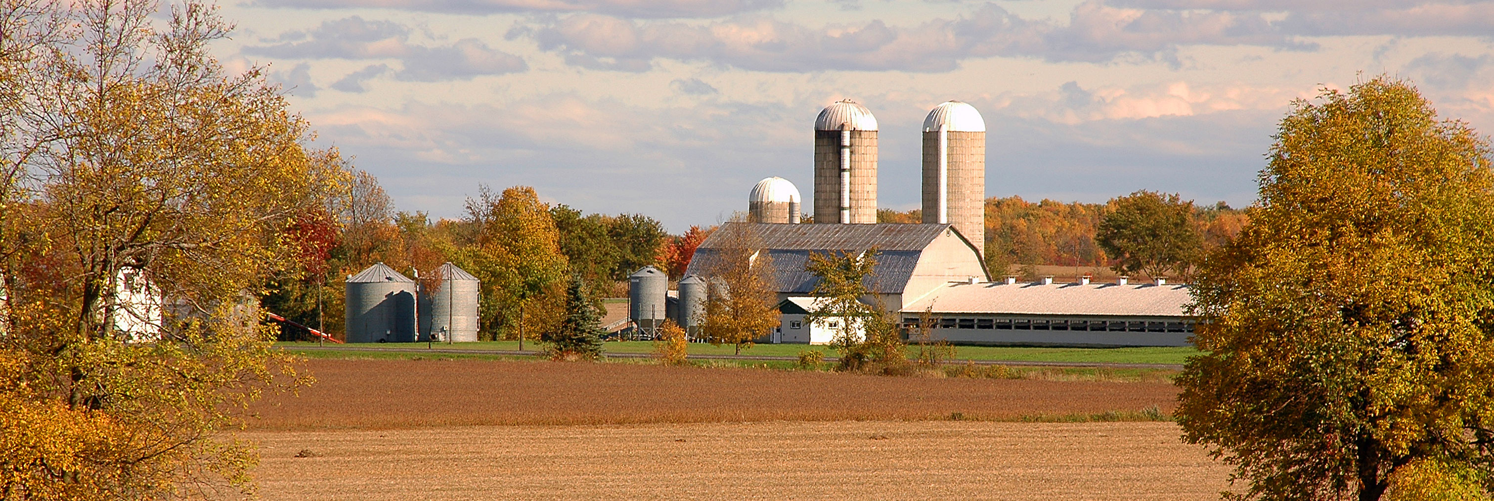 dairy farm and surrounding fields in autumn